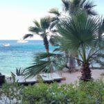 ibiza amante beach