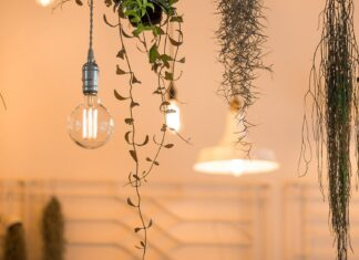 industriële hanglampen huizedop directlampen